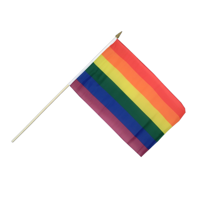 Regnbue vifteflag 30x45 cm på pind-313