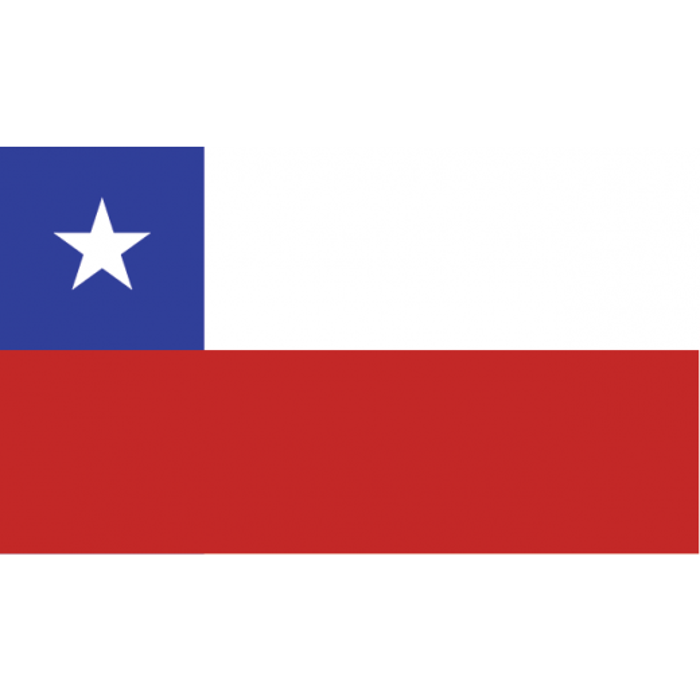 Chile vifteflag i papir (20x27 cm)-30