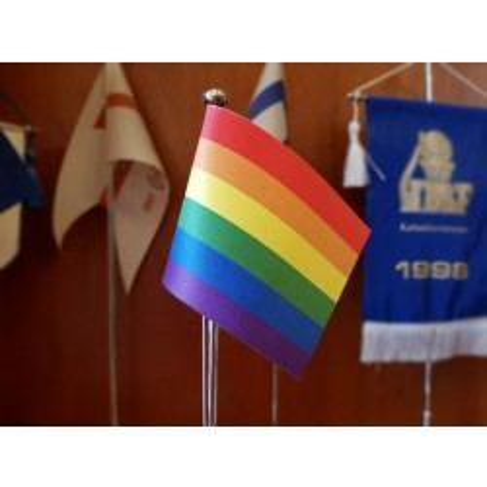 Regnbue bordflag str. 60 16x24 cm-20