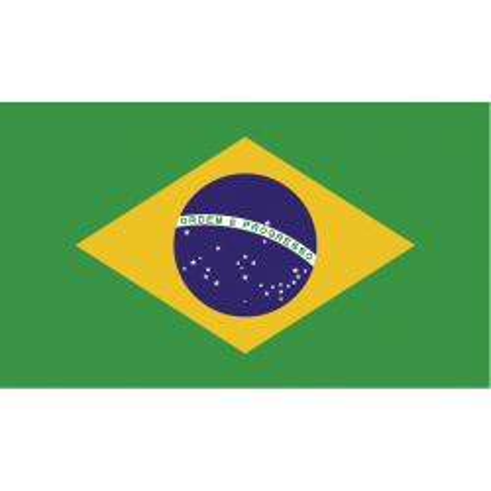 Brasilien vifteflag i papir (20x27 cm)-20