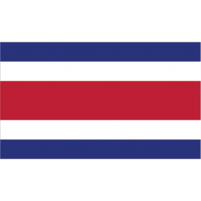 Costa Rica vifteflag i papir (20x27 cm)-20