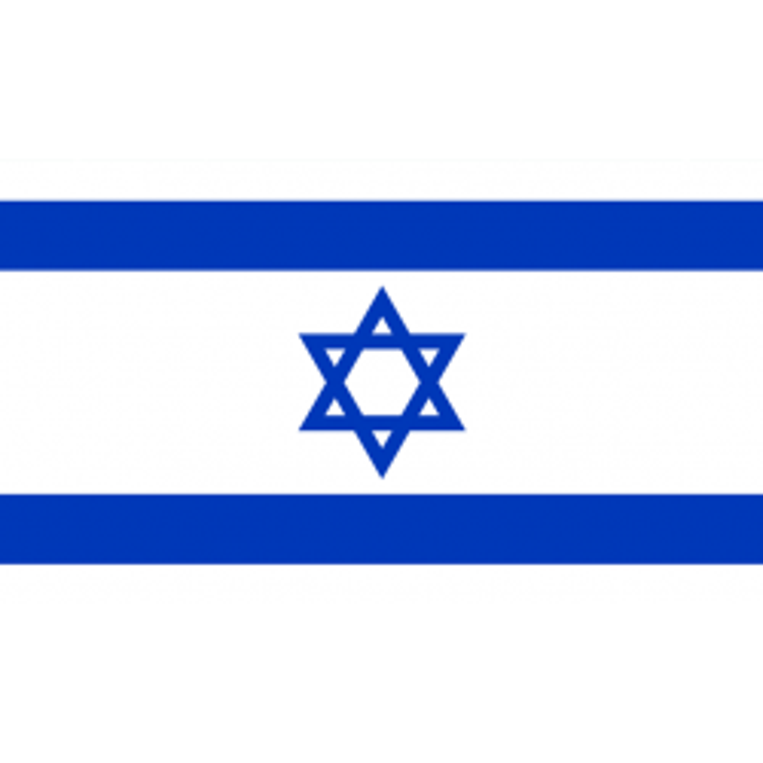 Israel vifteflag i papir (20x27 cm)