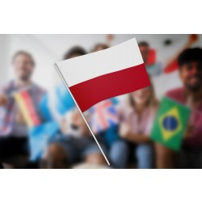 Polen vifteflag i papir (20x27 cm)