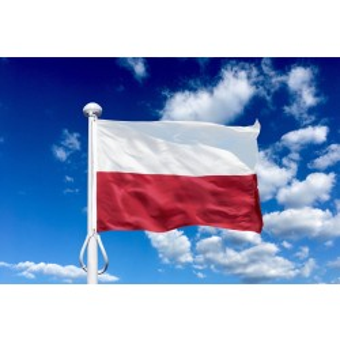 Polen 225 cm, 8-9 mtr. flagstang