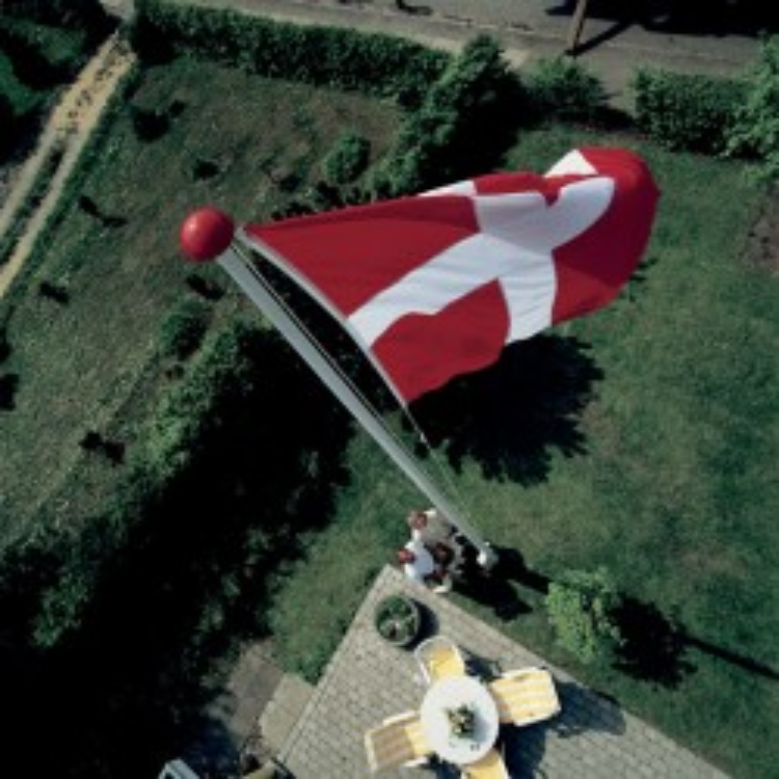Dannebrog 60 cm til 2 meter flagstang