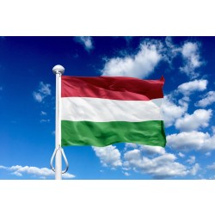 Ungarn 150 cm, 5-6 mtr. flagstang